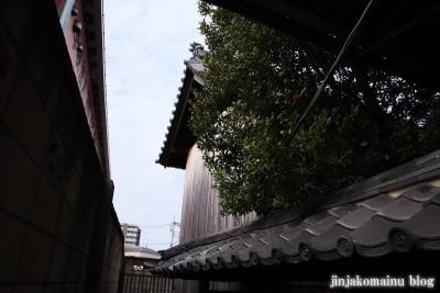 西新井氷川神社(足立区西新井本町)7