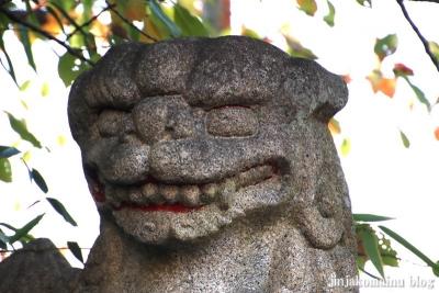 上千葉香取神社(葛飾区堀切)31