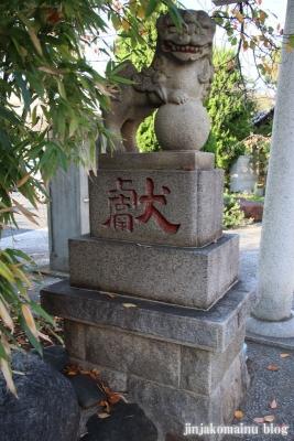 上千葉香取神社(葛飾区堀切)26