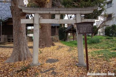 赤塚八幡神社(板橋区赤塚)2