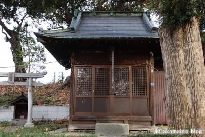 赤塚八幡神社(板橋区赤塚)5