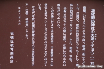赤塚諏訪神社(板橋区大門)14