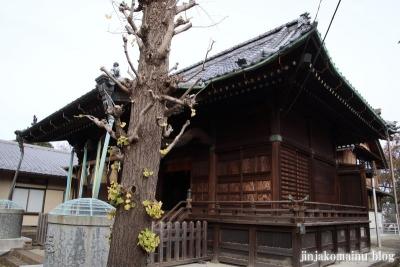 赤塚諏訪神社(板橋区大門)20