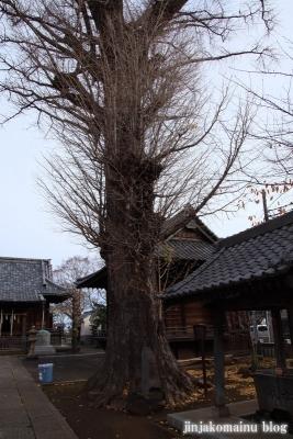 赤塚諏訪神社(板橋区大門)15