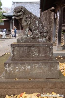 赤塚諏訪神社(板橋区大門)39