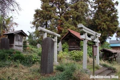 赤塚諏訪神社(板橋区大門)61