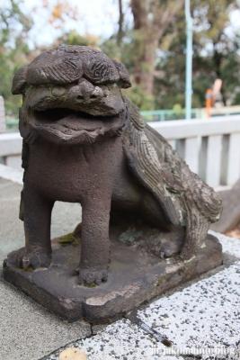 赤塚諏訪神社(板橋区大門)24