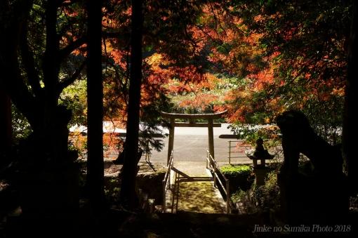 18-11-09-H06.jpg