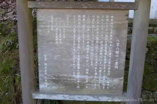 19-01-31-H07.jpg