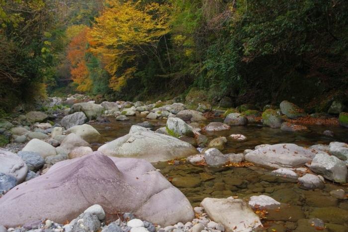 彩る木谷峡①