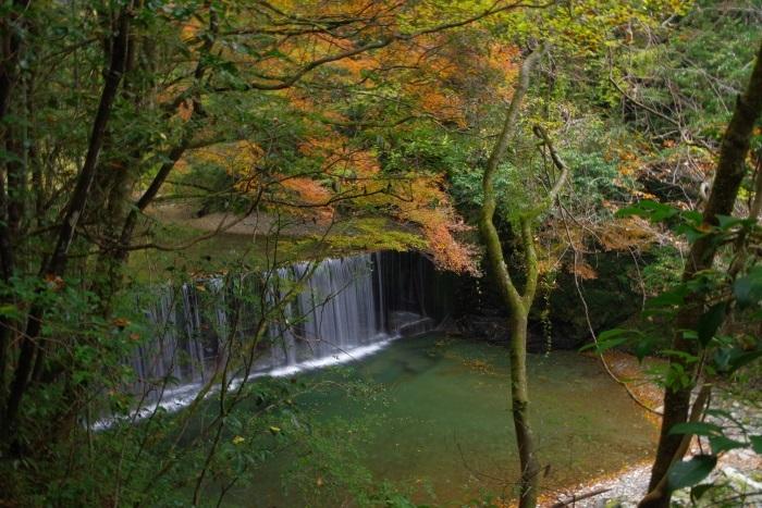 彩る木谷峡④