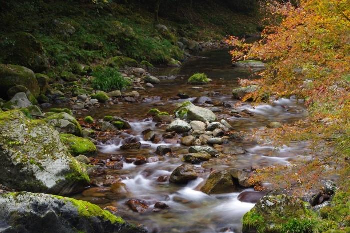 彩る木谷峡⑫