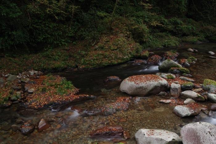 彩る木谷峡⑬