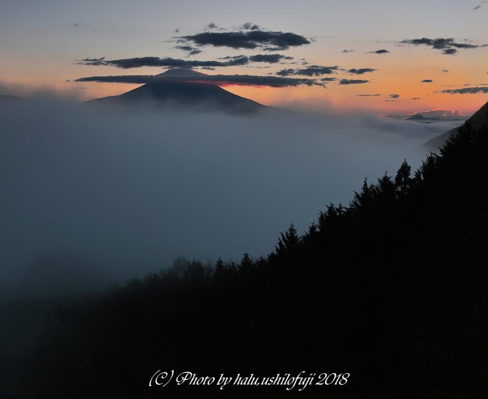 日の出雲海SNF