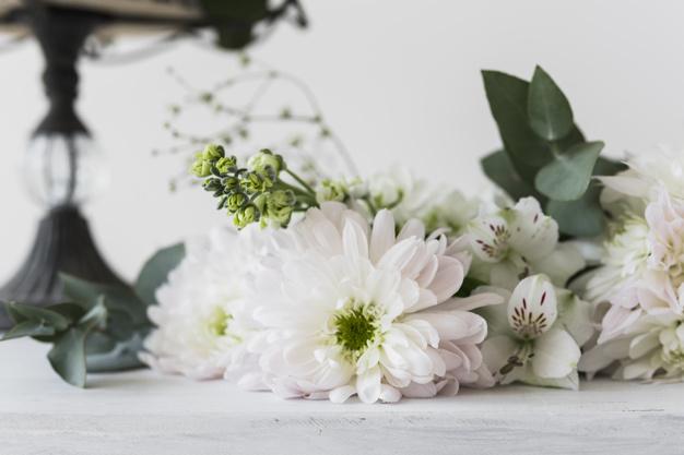 alstromeria-and-chrysanthemum-flowers-against-white-background_23-2147975462.jpg