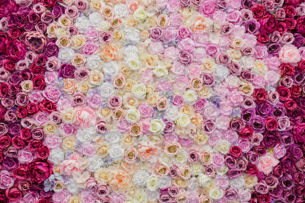 beautiful-wall-decorated-with-roses_24972-182.jpg