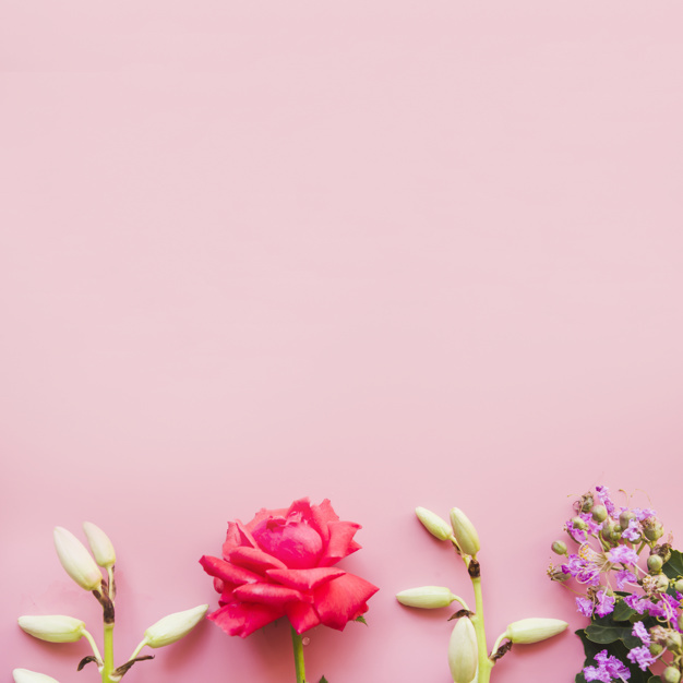 bottom-border-made-with-decorated-flowers-on-pink-background_23-2147925499.jpg