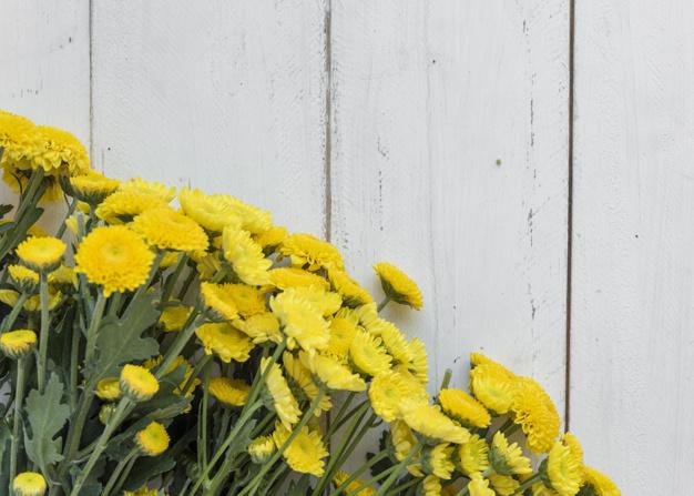 bunch-of-cute-flowers-on-table_23-2148029610.jpg