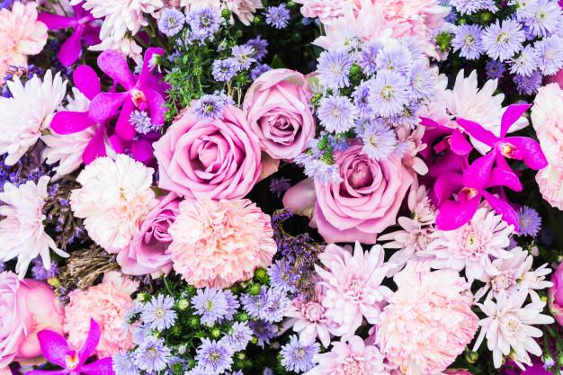 flower-backgrounds_74190-208.jpg