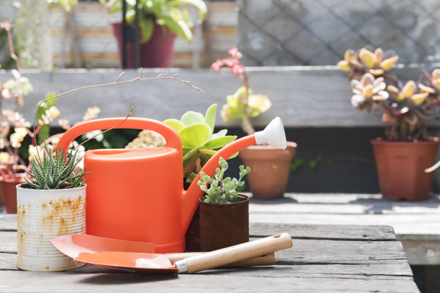 front-view-watering-can-on-wooden-tabl_23-2147997139.jpg