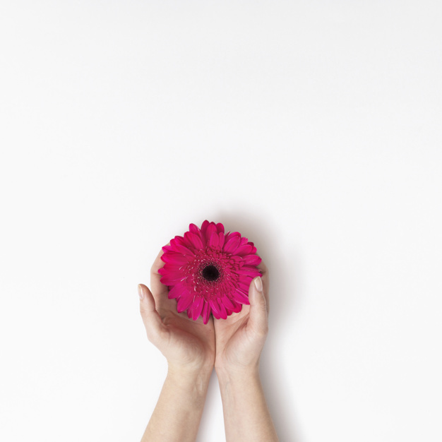 hands-with-pink-flower_23-2148042149.jpg