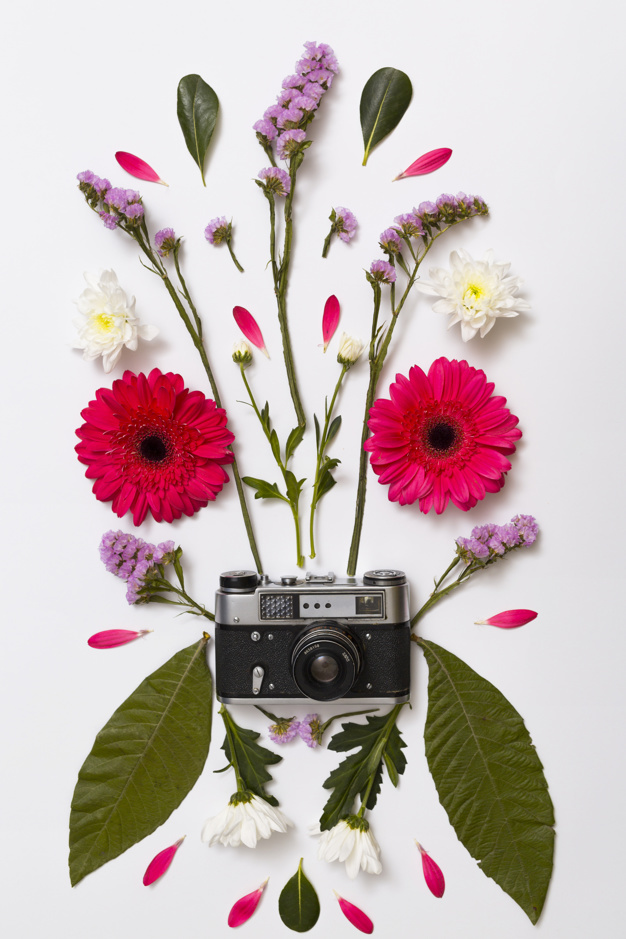 set-of-flowers-leaves-and-retro-camera_23-2148042158.jpg