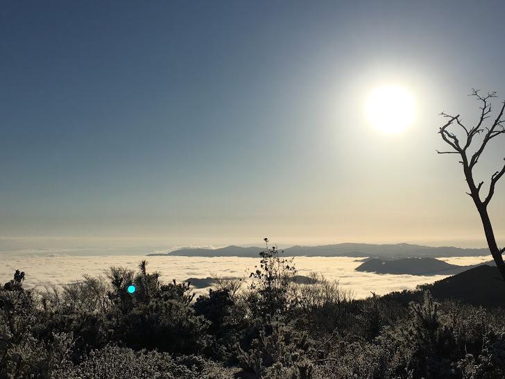 2019半国山/景色