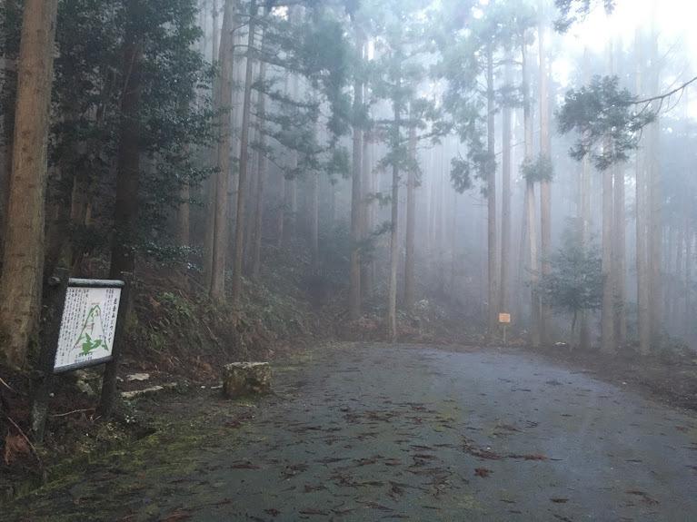 2019鹿倉山/林道終点