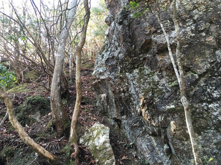 2019鹿倉山/岩沿いの狭い道
