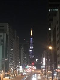 リボン・ゴールドカラー&2019点灯