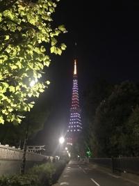 祝!大坂なおみ選手!スペシャルライトアップ