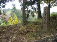 2018-11-05中尊寺菊祭り006