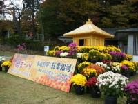 2018-11-05中尊寺菊祭り002