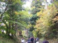 2018-11-05中尊寺菊祭り007