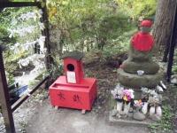 2018-11-05中尊寺菊祭り012