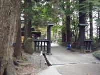 2018-11-05中尊寺菊祭り019