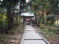 2018-11-05中尊寺菊祭り024