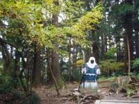 2018-11-05中尊寺菊祭り023