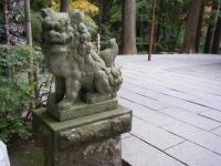 2018-11-05中尊寺菊祭り029