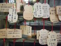 2018-11-05中尊寺菊祭り036