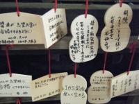 2018-11-05中尊寺菊祭り038