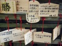 2018-11-05中尊寺菊祭り037