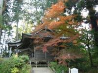 2018-11-05中尊寺菊祭り051