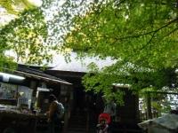 2018-11-05中尊寺菊祭り063