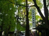 2018-11-05中尊寺菊祭り062