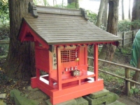 2018-11-05中尊寺菊祭り069