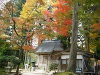 2018-11-05中尊寺菊祭り074