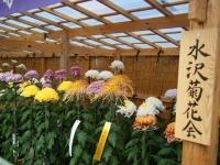 2018-11-05中尊寺菊祭り098