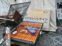 エクセレントケイジ(大)しろぷーうさぎ07
