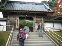 2018-11-05中尊寺菊祭り0116